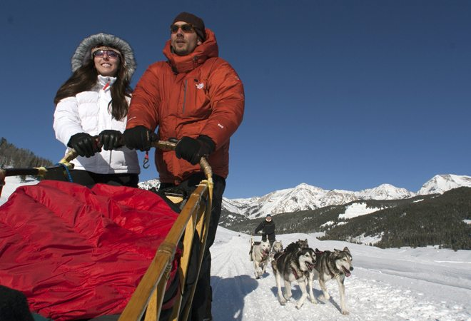 Jackson-Hole-Iditarod-Sled-Dog-Tours